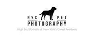 nycpetphotos